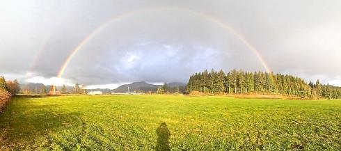 Rainbow NFN
